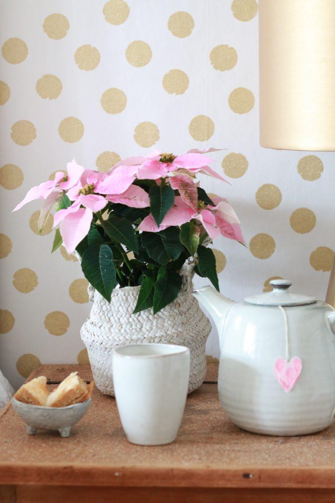 rosa-weihnachtsstern-mit-rice-tapete-mit-goldenen-punkten